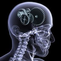 brain engine
